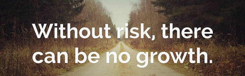 risk and growth
