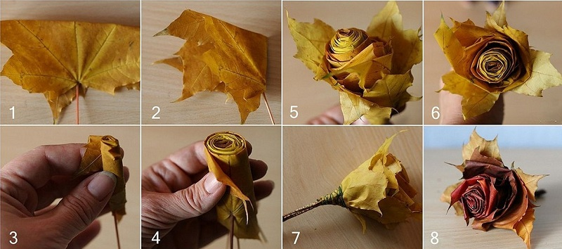 How To Make Roses From Maple Leaves In Your Own Hands