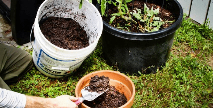Prepare the compost at home